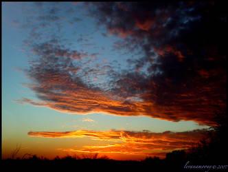 Skyfire by levanamoony
