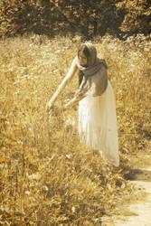 harvest time by Jane-Aspen