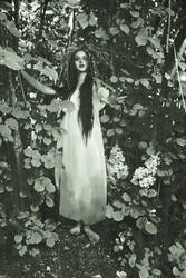 May Night, or the Drowned Maiden by Jane-Aspen