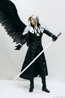 Sephiroth: proud of himself 03 by scargeear