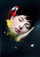 Dream by mOsk