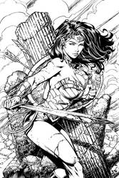 Wonder Woman COVER David Finch and Richard Friend by Blasterkid