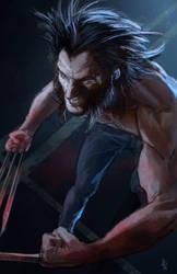 Wolverine by pierreloyvet