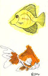 Sketchbook Fish by Jesness