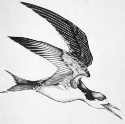 Bird Tattoo Design by styrofoam-SKELLETON