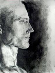 Man Study WIP ... by sketchdoll07