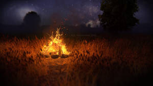 Romantic campfire by Voleuro