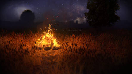 Romantic campfire by Voleuro