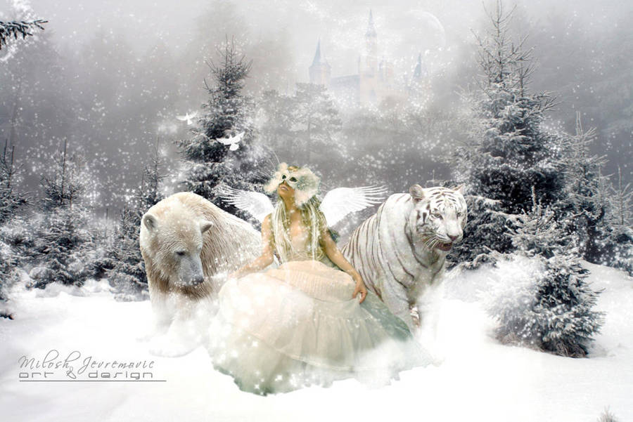 Winter's magic by MiloshJevremovic