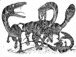 Coelophysis Gang by HodariNundu