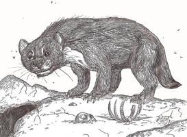 Megalictis by HodariNundu