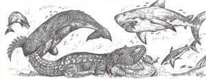 Annoying Whale by HodariNundu