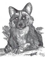 Xenocyon the African Wolf by HodariNundu