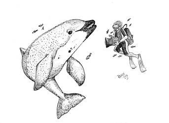 I Drew Two On Porpoise by HodariNundu