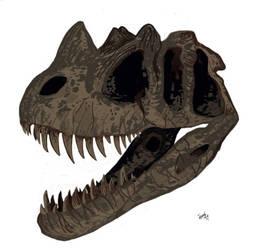 Ceratosaurus! by HodariNundu