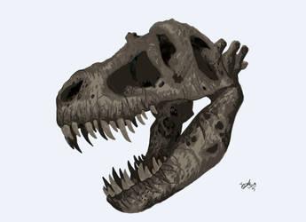Tyrannosaurus! by HodariNundu