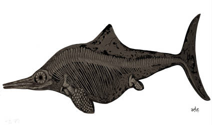 Ichthyosaur! by HodariNundu