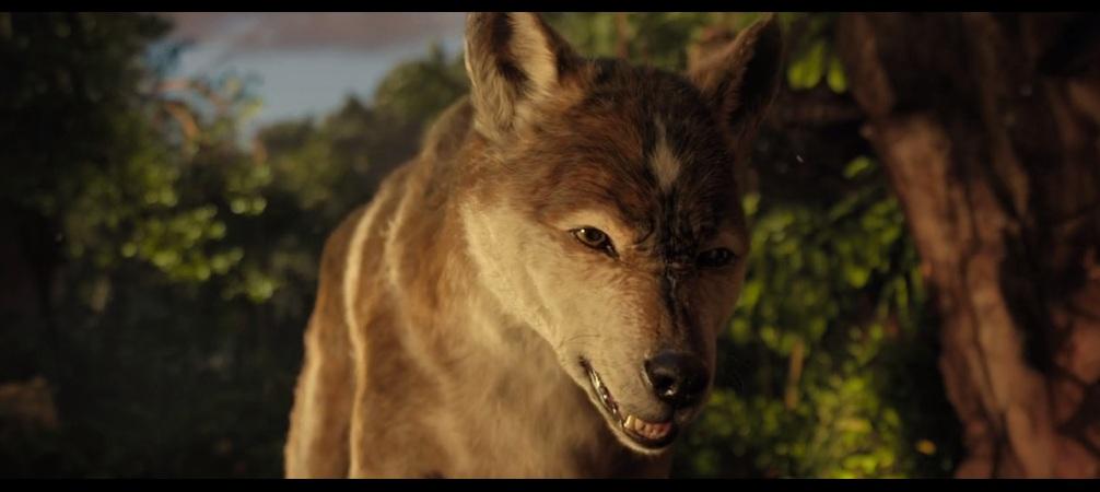 Wolf4 by HodariNundu