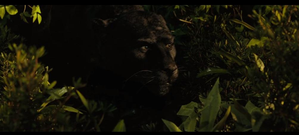 Panther by HodariNundu