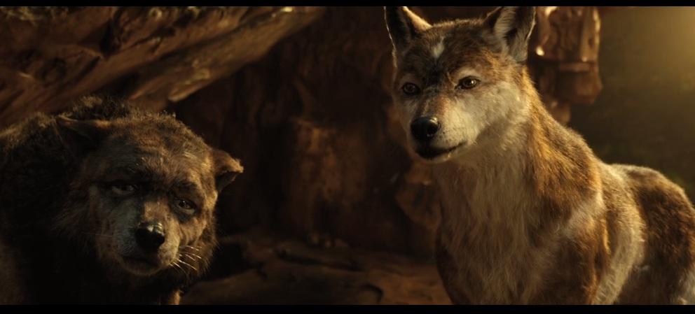Wolf6 by HodariNundu