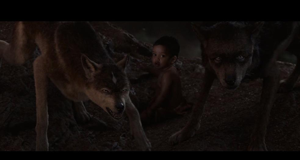 Wolf565 by HodariNundu
