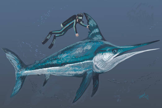 Diving with Xiphiorhynchus by HodariNundu
