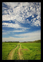 Path Through the Pasture by tfavretto