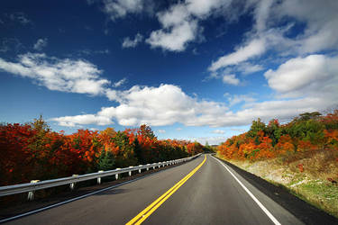 Highway 556 by tfavretto