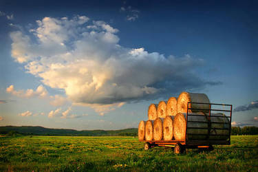 Bales of the Bar River Valley by tfavretto