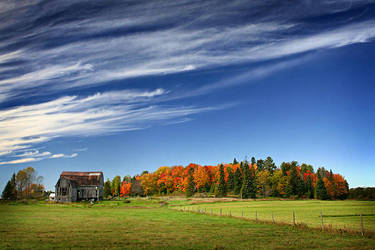 Colors of the Countryside by tfavretto