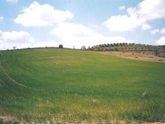 A Real XP Landscape by oscargascon