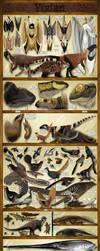 Yixian Formation Exhibit by KirbyniferousRegret