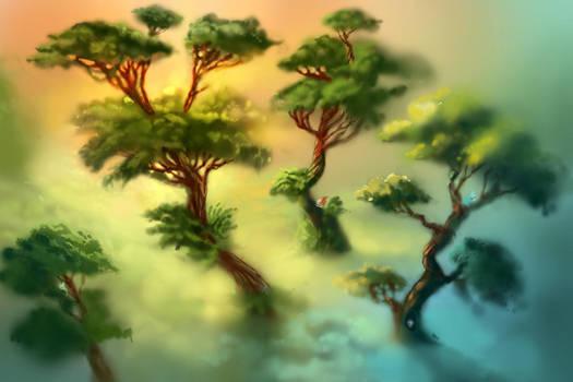 Forest by impaga