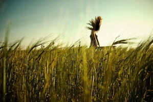 Wild wheat by ElenaRacu
