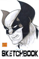 Wolverine face sketch cover by mdavidct