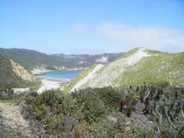 san miguel island by ktree