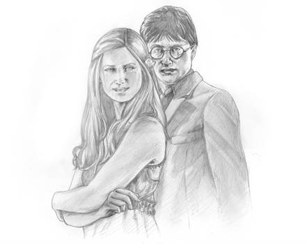 Harry and Ginny by mgasser