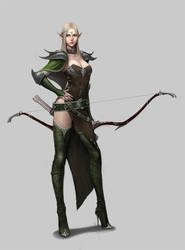 Elven archer by dimelife
