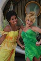 Fairy Friends by DisneyLizzi