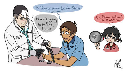 Voltron Zoo AU by animemyster
