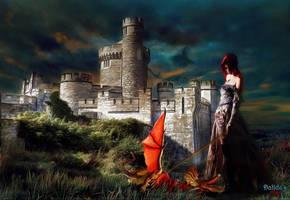 Blackrock Castle by makiskan