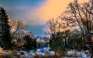 Winter Landscape by makiskan