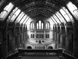 Natural History Museum by BlueOrph