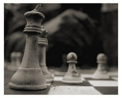 Your move... by jkiner