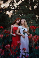 Snow-White and Rose-Red by AnastasiaStaroselets