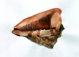Rapana by Muti-Valchev