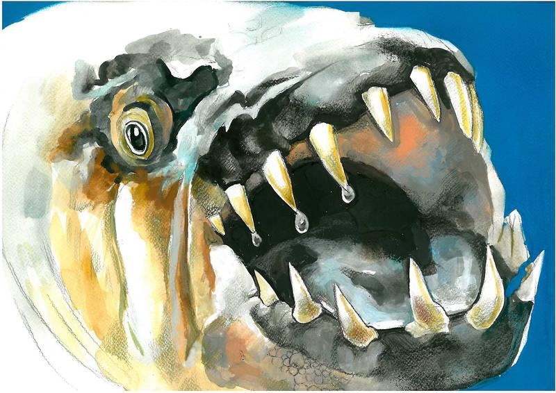 Tiger fish by Muti-Valchev
