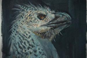 Generic raptor head by RAPHTOR