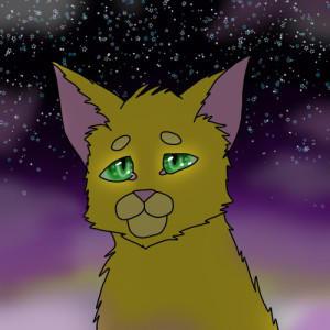 Sunstar-Of-The-North's Profile Picture