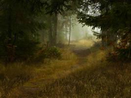 Coniferous Forest by AliaChek